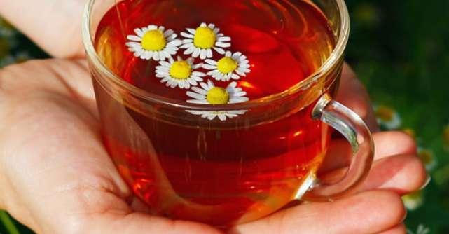 CANDIDOZA: 7 Ceaiuri medicinale cu efecte vindecatoare