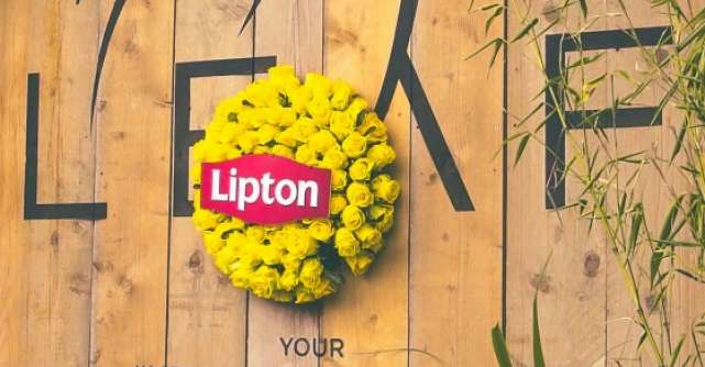 Gasca Lipton Ice Tea a dat #verdelamuzica la Tomorrowland. Afla cum s-au distrat