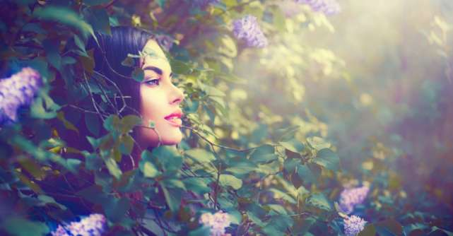 Legenda florii de liliac. O poveste prea frumoasă pentru a fi ignorată