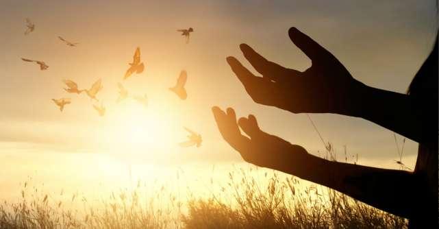 9 Adevăruri minunate care vor schimba modul în care vezi viața