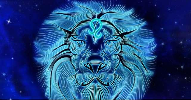 Barbatul Leu descifrat cu bune si cu rele