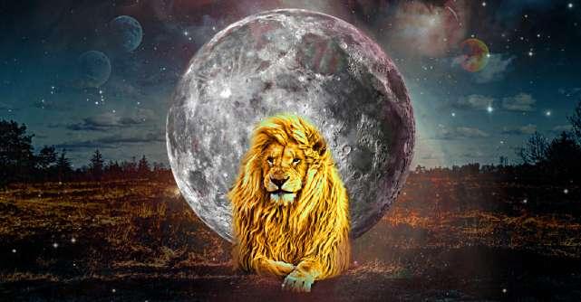 Luna Nouă în Leu de pe 8 august ne învață că niciodată nu-i prea târziu să o luăm de la capăt