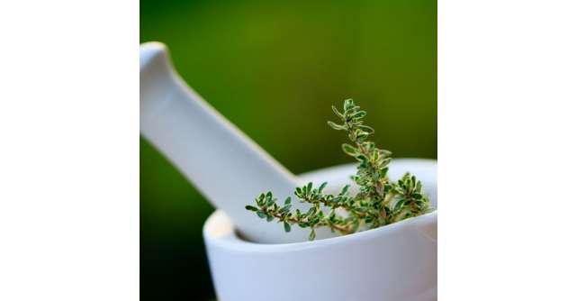 5 Tratamente naturiste pentru CISTITA si infectii urinare