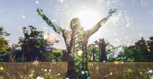 Wayne Dyer te învață cum să îți creezi un decembrie plin de iubire și armonie
