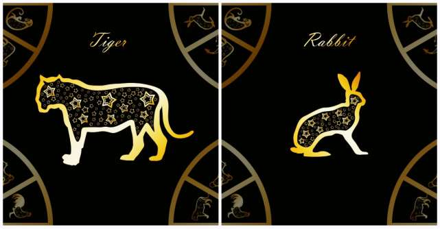 Horoscop chinezesc pentru Tigru si Iepure in 2020