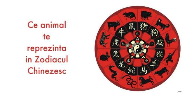 Horoscop: Astrologia chineza