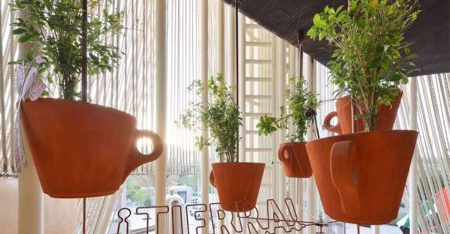 Lavazza încheie un parteneriat cu pavilionul Italiei din cadrul expo Dubai 2020:Grădina Solară de Cafea