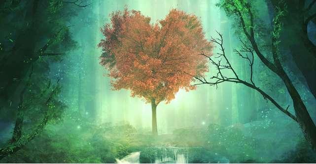 Cele 4 caracteristici ale iubirii adevarate