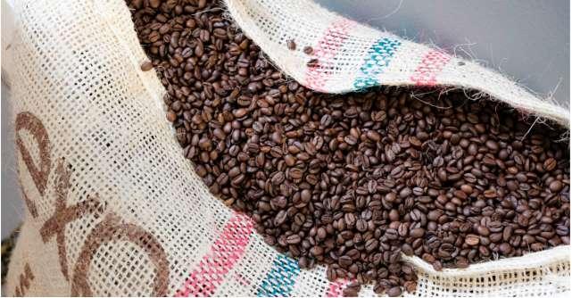 Cafeaua – ce beneficii are pentru organism și cum o integrăm în ritualurile de îngrijire