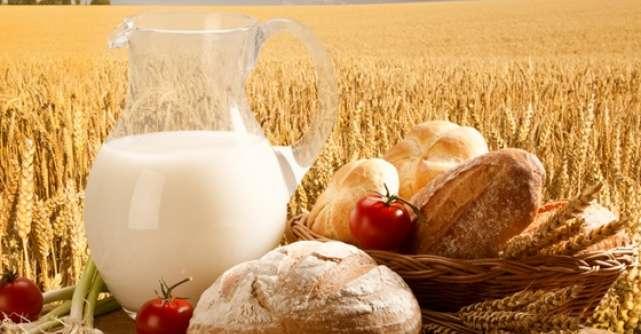 Top 5 cele mai eficiente diete