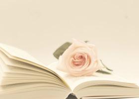 Cele mai frumoase citate de iubire dupa Elizabeth Gilbert