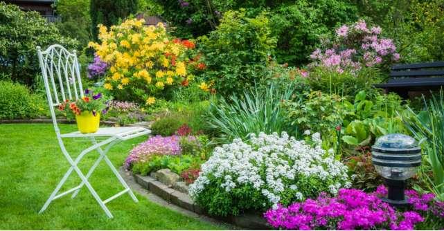 Cum să-ți pregătești grădina primăvara. 7 pași ușor de urmat