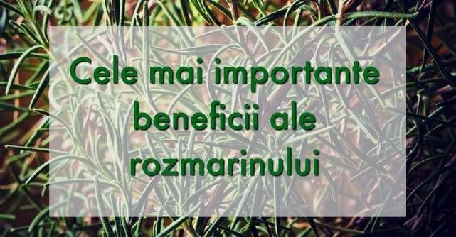 Beneficiile miraculoase ale rozmarinului