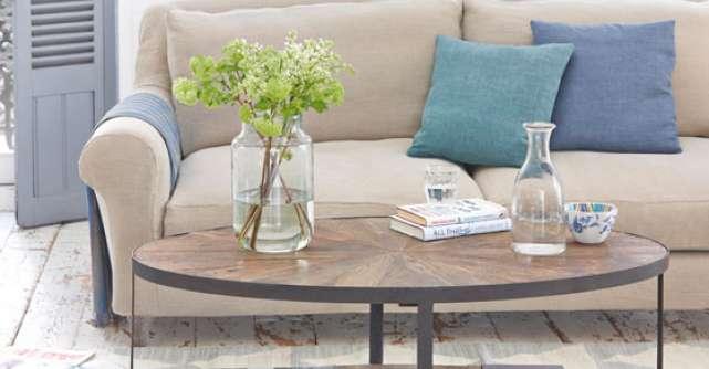 Ce plante alegi, in functie de stilul decorativ al locuintei?