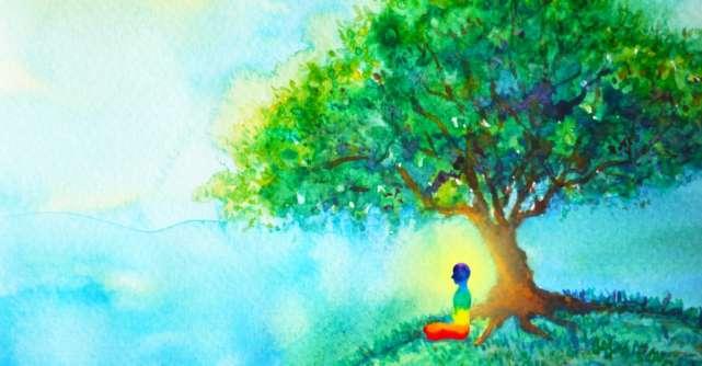 5 Legi ale Karmei care iti vor schimba viata si modul in care gandesti